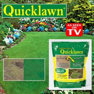 Quick Lawn Reviews: For Rich, Velvety Greens All Year Round